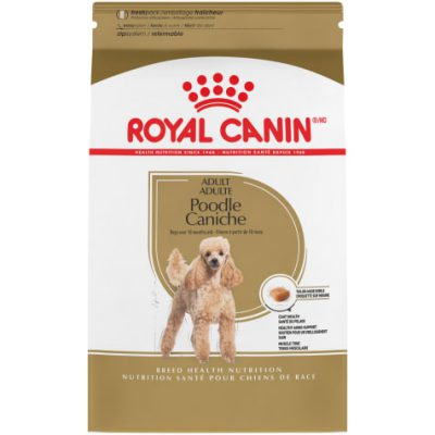 royal canin poodle adults